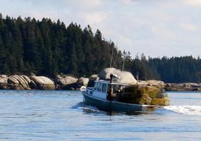 Lobster Boat with Traps